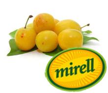 mirabellen51b05af872b3c